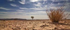 Parched-Earth_600x256