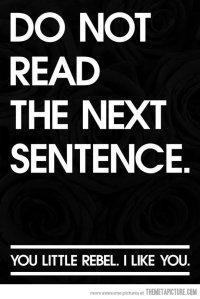 funny-sentence-rebel-sign