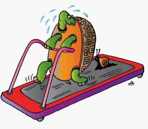 tortoise_treadmill